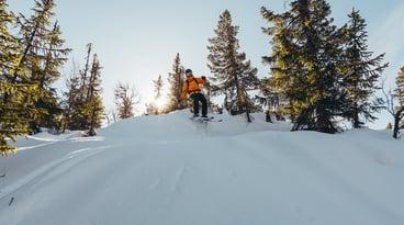 skikort, gausta, sportell